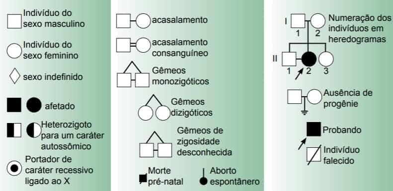 Genética - Revisão Biologia Enem 3